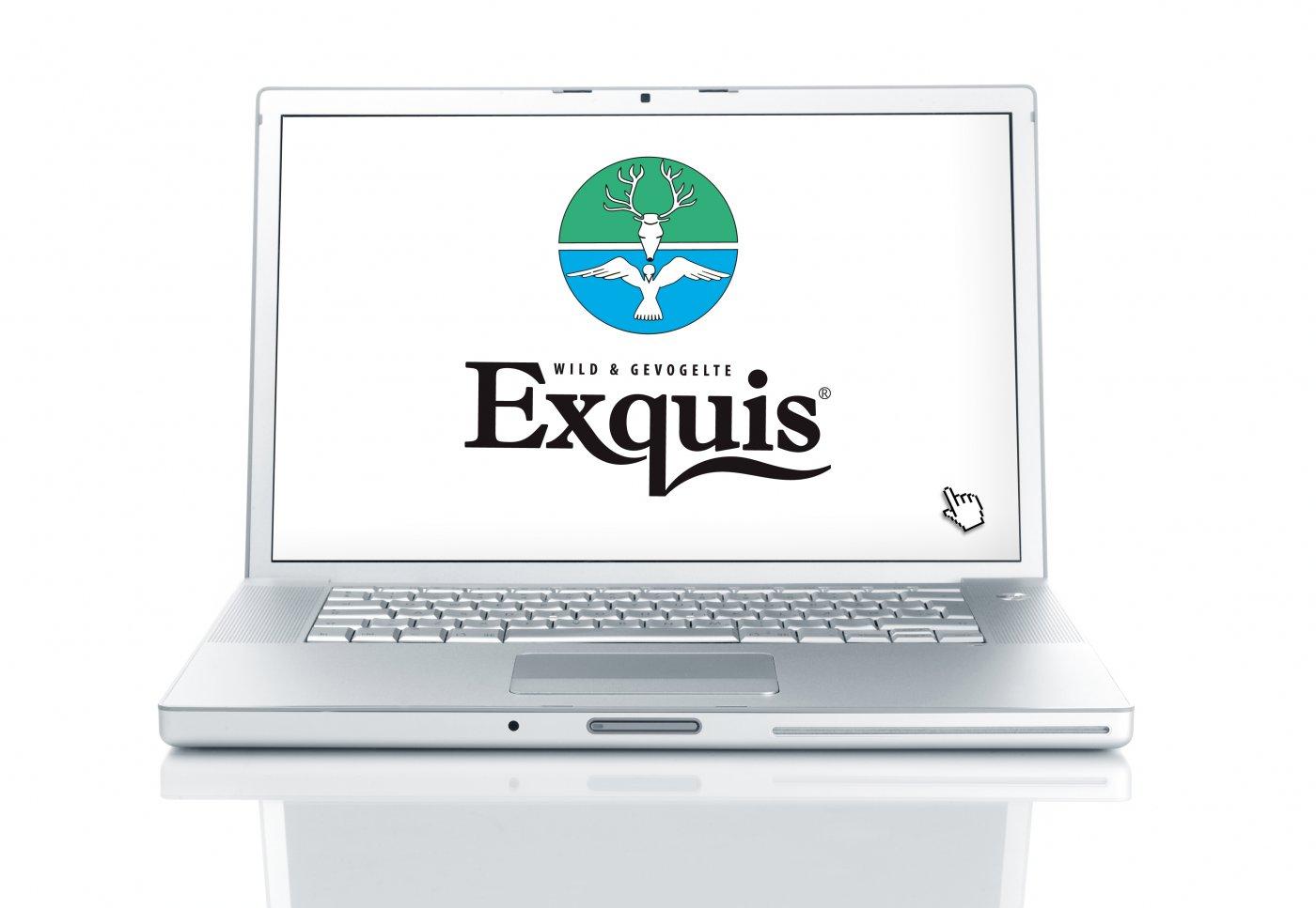 Logo Exquis